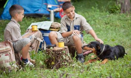 Using nature to boost academic performance